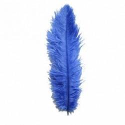 Spadonis veer blauw
