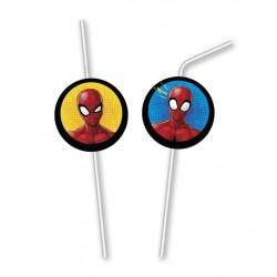 Rietjes Spiderman Team Up