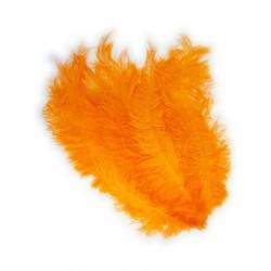 Floss veer Zwarte Piet oranje