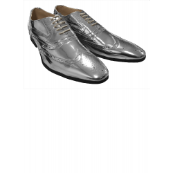 Schoenen zilver met veters